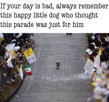 parade-is-just-for-me